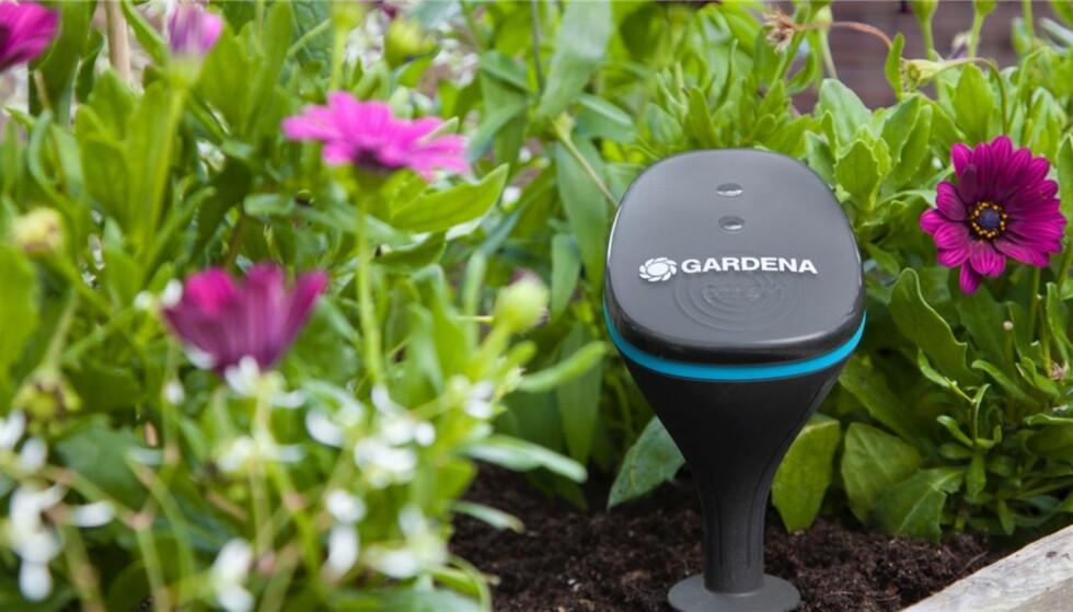 NØYAKTIG VANNING: Denne sensoren måler fuktighet, lys og temperatur i hagen, slik at vanningen kan tilpasses etter forholdene. Foto: Gardena