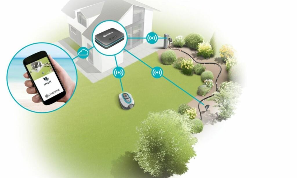 AVANSERT: Ved hjelp av app, styringsenhet og sensorer kan hagen overvåkes og kontrolleres. Også vannlås og gressklipper kan innlemmes i systemet. Illustrasjon: Gardena