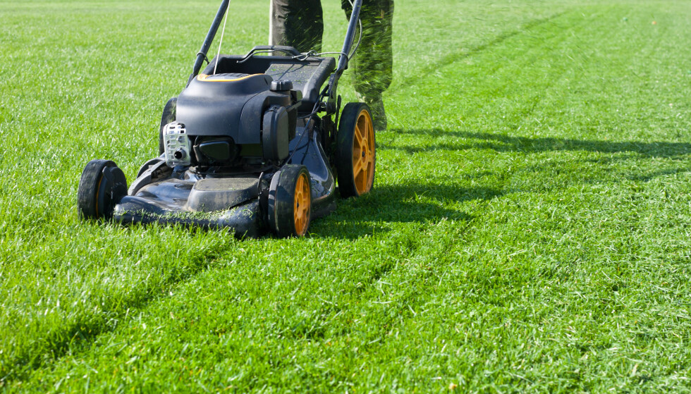 LOV ELLER IKKE? Kan man egentlig klippe gresset på 17.mai? Foto: Shutterstock / NTB Scanpix
