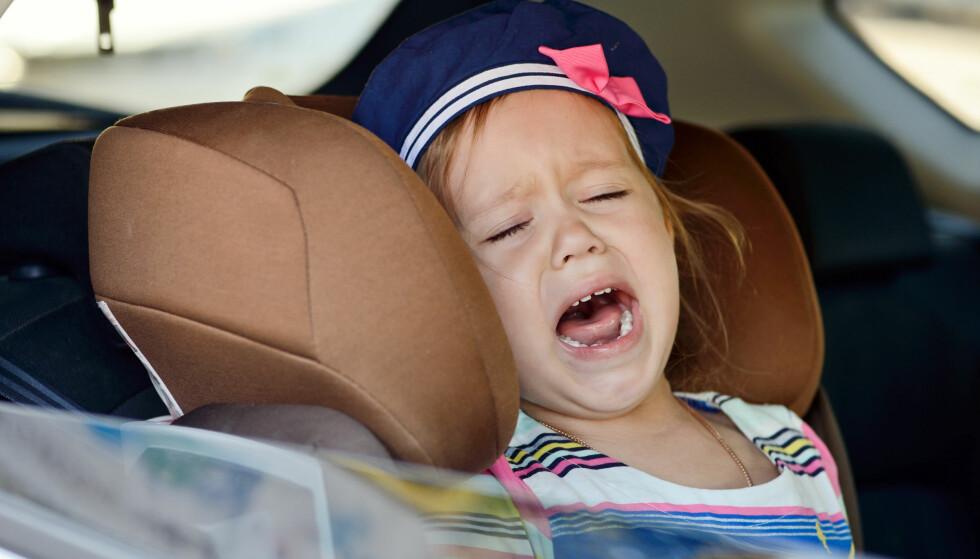 PASS PÅ SOMMERVARMEN! Politiet er oppgitt over at altfor mange glemmer både barn og dyr i stekende varme biler. Foto: NTB Scanpix