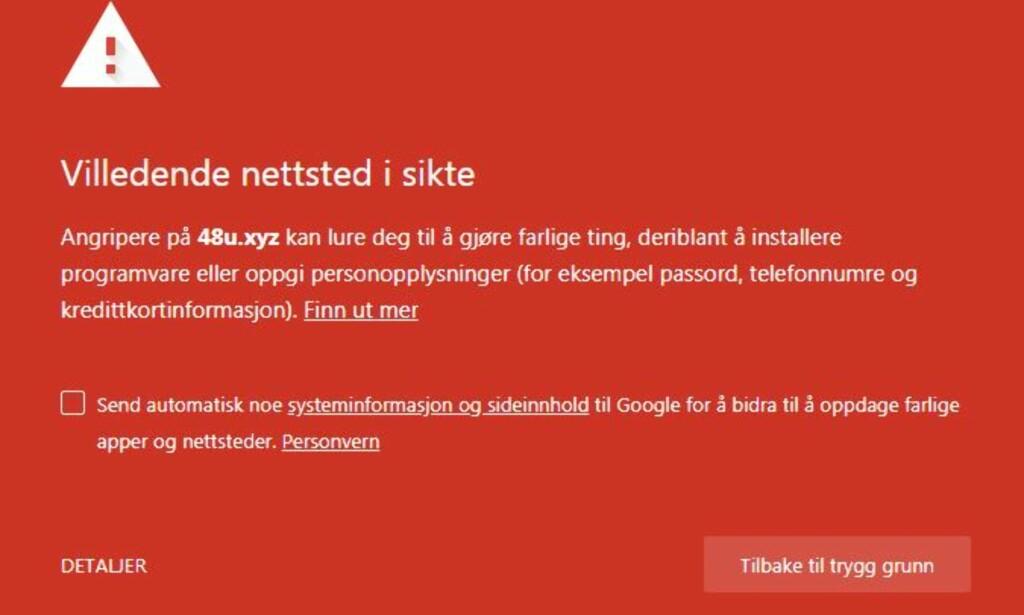FARLIG: Det er ikke tvil om hva Googles Chrome-nettleser mener om nettstedet der pang-tilbudet ligger. Og selskapet bak: Vel, det viser seg å være en billakkerer i USA ... Foto: Skjermdump