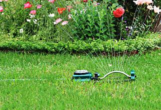 Har kommunen din vanningsforbud?