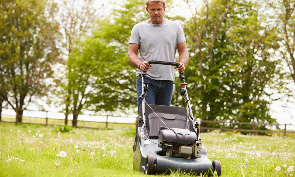 IKKE BRA: Forskerne er ikke i tvil om at du utsetter deg for farlige utslipp om du bruker vanlig bensin på gressklipperen. Alkylatbensin inneholder knapt slike stoffer. Foto: Monkey Business Images/Shutterstock/NTB scanpix