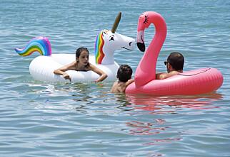 Pass på dette om ungene leker med badedyr på stranda