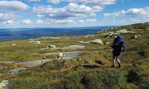 image: Slik velger du riktig fjellsko for fjellturen