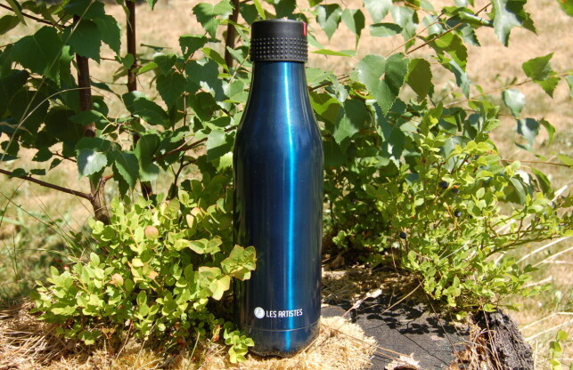 GOD FLASKE: En flaske som holder godt påtemperaturen, men litt dyr, mener vi. Foto: Christina Honningsvåg