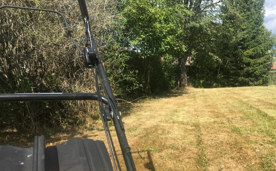 BRUN PLEN? Ikke fortvil, og styr unna gressklipperen. Foto: Berit B. Njarga