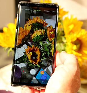 <strong>GJENKJENNER SCENER:</strong> Akkurat som Huawei P20 Pro kan Note 9 se hva du tar bilde av og tilpasser kamerainnstillingene deretter. Foto: Kirsti Østvang