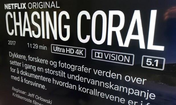 Netflix er blant tjenestene som tilbyr enkelte titler i Dolby Vision-formatet, her avfotografert på Apple TV 4K. Foto: Bjørn Eirik Loftås