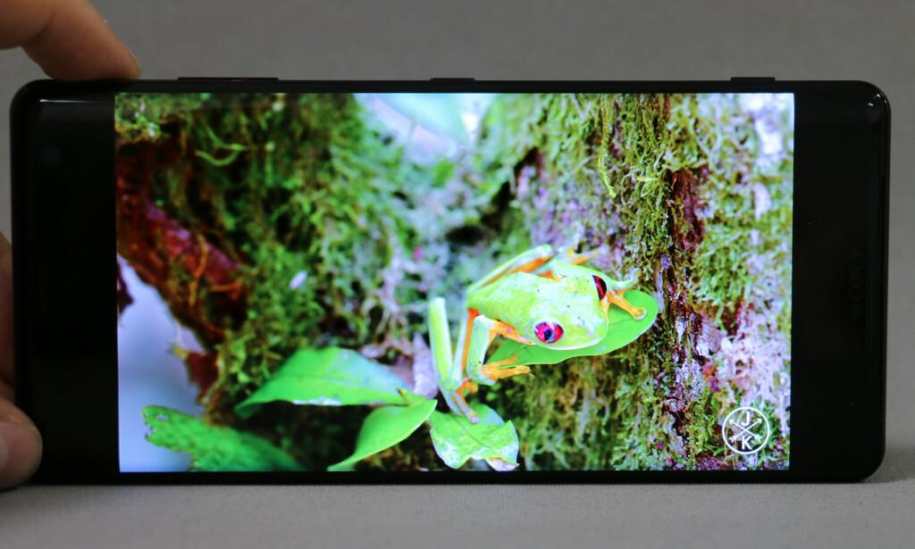 GOD SKJERM: Sonys OLED-skjerm har, som de andre, svært rike farger og god kontrast. Foto: Pål Joakim Pollen