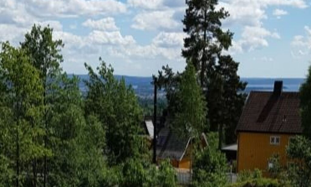 image: Fjernet nabohus, strømstolper og trær. Reklamerte med fjordutsikt