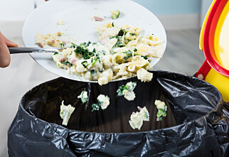 Nordmenn kaster 42,6 kilo spiselig mat hver i året - disse er «verstinger»