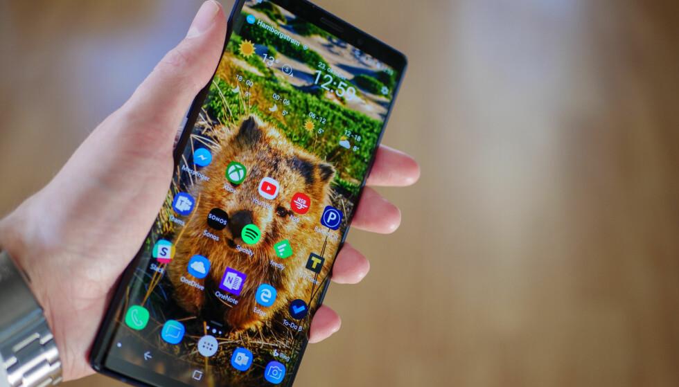 SIKKERHET PÅ MOBIL: Google Play Protect får stryk, mens 19 andre får ståkarakter. Foto: Martin Kynningsrud Størbu