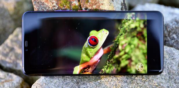 <strong>FLOTT SKJERM:</strong> AMOLED-skjermen på Mate 20 Pro byr på svært gode farger og høy oppløsning. Foto: Pål Joakim Pollen