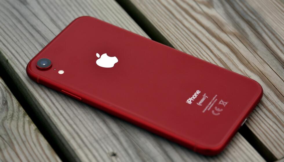 LILLEBROR: iPhone Xr er den rimeligste av årets iPhone-modeller og har bare ett kamera på baksiden. Foto: Pål Joakim Pollen