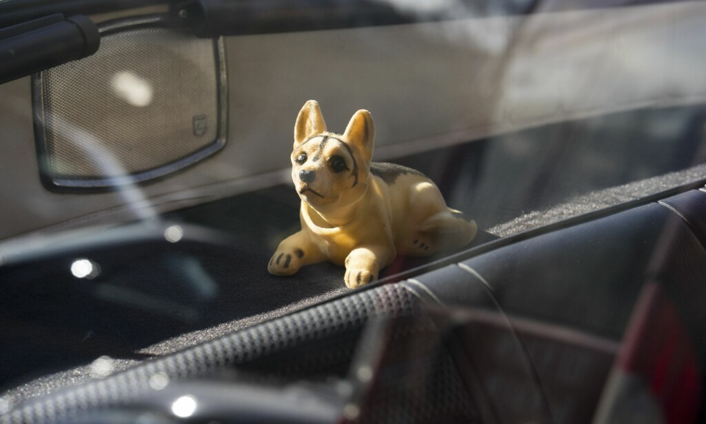 PÅ TUR MED HUNDEN: Tidsriktig vakthund passer på mono-høyttaleren. Foto: Paal Kvamme