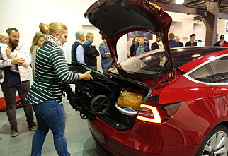 Teslas nye storselger