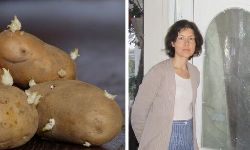 image: Fant ukjente poteter i hagen: Uka etter hadde de innbrudd