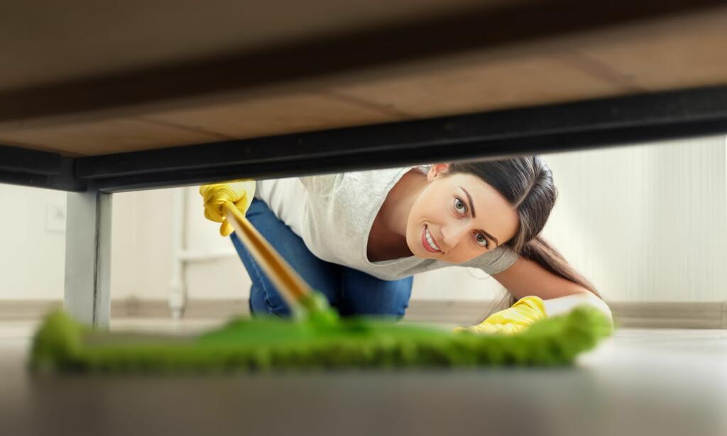 PASS PÅ: Husstøv og hybelkaniner kan skjule farlige miljøgifter, ifølge en fersk rapport. Og noen miljøgifter er det mer av i støvet ditt, enn andre. Foto: Shutterstock/NTB scanpix