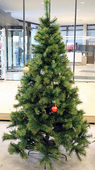ANNERLEDES-TREET: Clas Ohlsons juletre ser ikke ut som noen av de andre trærne i testen, men det er ikke nødvendigvis en dårlig ting. Foto: Kirsti Østvang