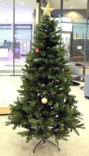 UNATURLIG TETT: Europris-treet er fint og fyldig, men ser i overkant uekte ut. Foto: Kirsti Østvang