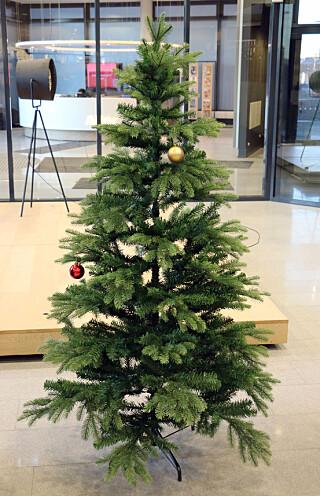 VÅR FAVORITT: Hagelands Dovre-juletre ser naturlig ut, var enkelt å sette opp og står stødig. Og det drysset nesten ingenting. Foto: Kirsti Østvang