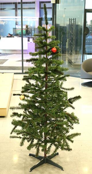 DU GRØNNE, PISTRETE: Selv når vi fikk dandert til grenene ordentlig, synes vi IKEAs juletre ser ganske stusselig ut. Foto: Kirsti Østvang