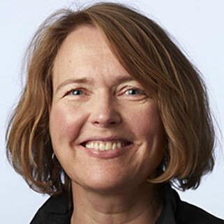 REFLEKTERER INNHOLDET I TING RUNDT OSS: Heidi Morka, seksjonsleder i Miljødirektoratet, sier at funnene av miljøgifter i husstøv reflekterer at stoffene brukes i produkter vi omgir oss med daglig. Foto: Miljødirektoratet