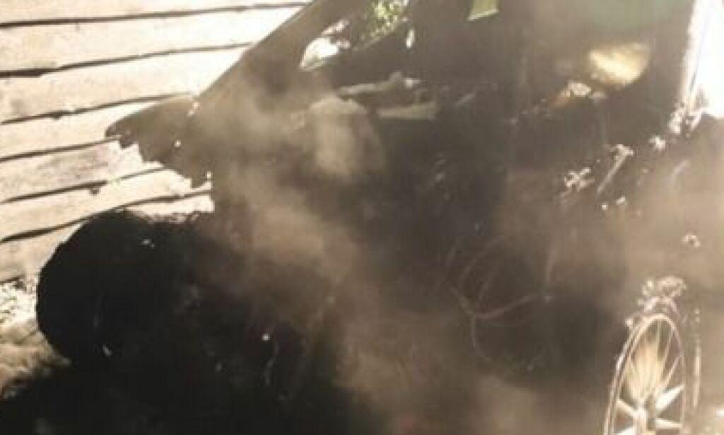 image: Prestisje-elbil brente ned