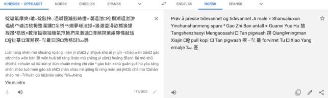 Vi limte inn et utdrag av den kinesiske teksten inn i Google Translate.