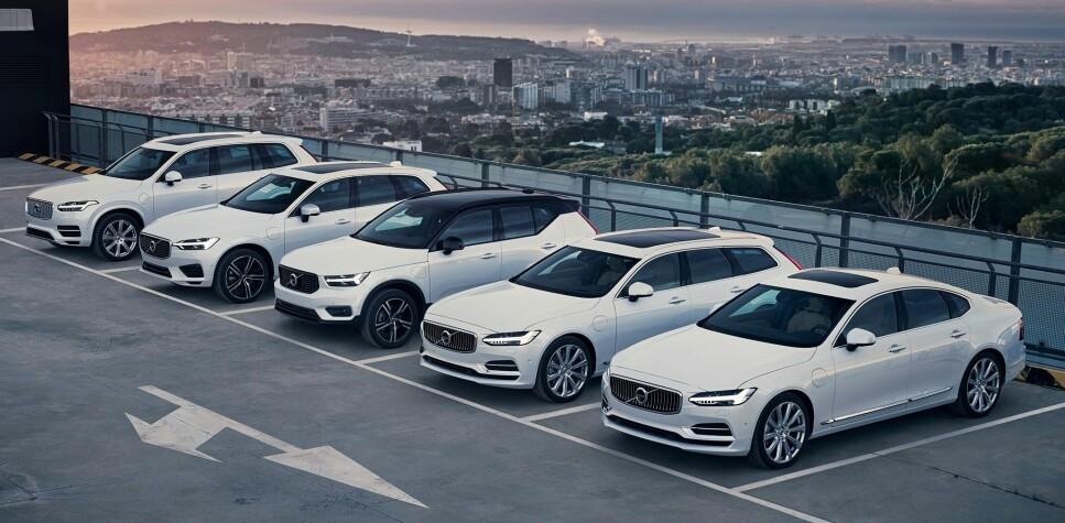 GULLREKKA: Her er et utvalg ladbare hybrid-modeller fra Volvo, blant dem som var med å sikre salgssuksess for den svenske bilprodusenten i 2018. Foto: Volvo Cars