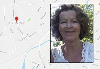 Mener Google Maps kan hjelpe i forsvinningssaken