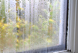 Slik ser du om de gamle vinduene bør byttes ut