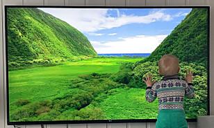 STORSKJERM: Merk at jo større TV-ene blir, desto mer strøm bruker de gjerne. Her, en 70-tommer fra LG, som bruker over 200 watt. Foto: Bjørn Eirik Loftås