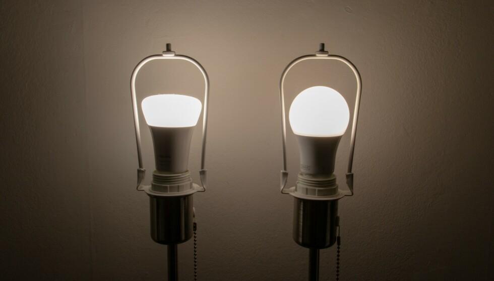 Begge lyspærene satt til fokus. Foto: Martin Kynningsrud Størbu