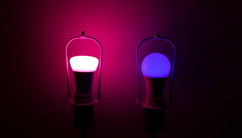 De smarte lyspærene gir litt farge til tilværelsen. Foto: Martin Kynningsrud Størbu