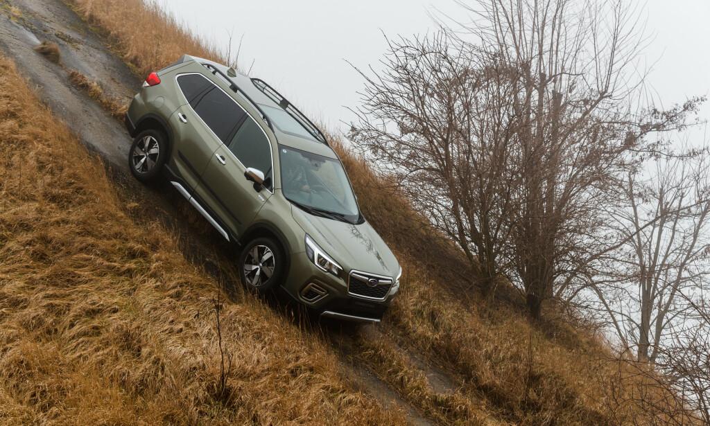 BRA I SKAUEN: Bakkeklaringen på 22 cm og evnen til å ta seg fram er viktige verdier for Subaru og en viktig grunn til at mange velger Subaru. Foto: Subaru