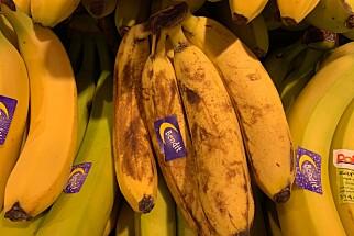 BRUNE BANANER: Dersom bananene begynner å bli overmodne, er de perfekte til pannekaker, brød eller smoothie. Foto: Eilin Lindvoll.