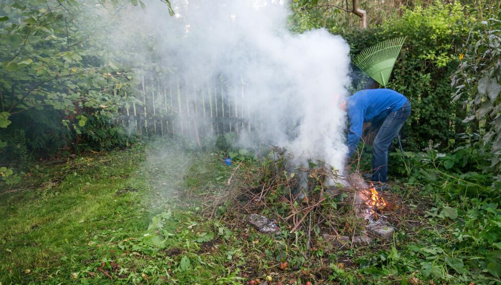 TABBE: Mannen skulle brenne bråte og brant ned hele tujahekken til naboen i samme slengen. Erstatningskravet på 100.000 kroner dekket forsikringen. Foto: Shutterstock/NTB scanpix