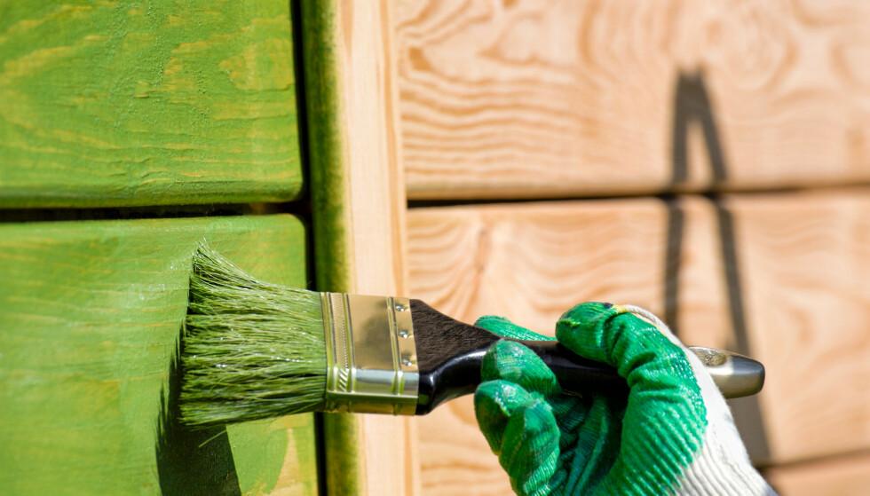 MALE UTE: Finn ut når det er best å male vegger utendørs, og hvilket forarbeid du bør gjøre før du finner fram penselen. Foto: Shutterstock/NTB Scanpix.