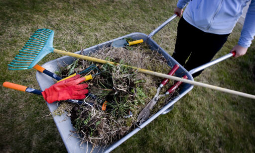 image: Pristest: Her får du hageredskapene billigst