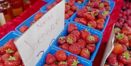 Her får du tak i norske jordbær nå