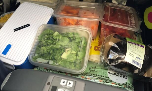 STOR MATPAKKE: Her ser du innholdet i matkofferten til familien Grønseth på USA-tur. Foto: privat.