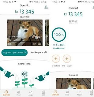 SPARE: DNB sin spare-app ser slik ut, der du også har oversikt over verdien du har i både bankkontoer, fond og aksjer. Foto: Skjermdump