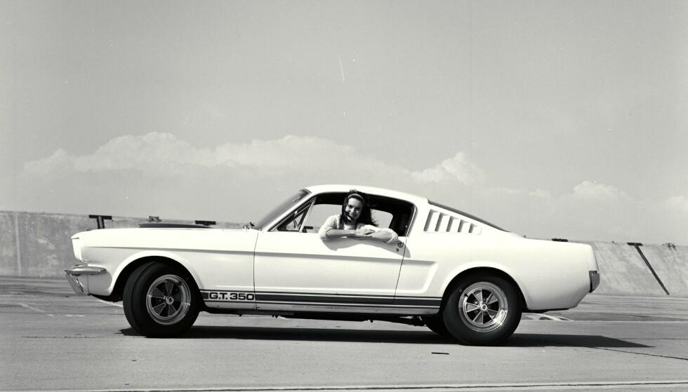 RACERBIL: 1965 Shelby GT-350.