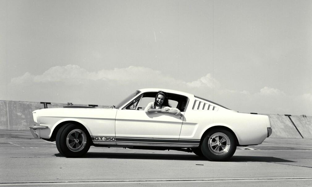 FORD MUSTANG: Den amerikanske sportsbilen er en ordentlig legende, som fortjener egen artikkel. Her er en Shelby GT-350 fra 1965.