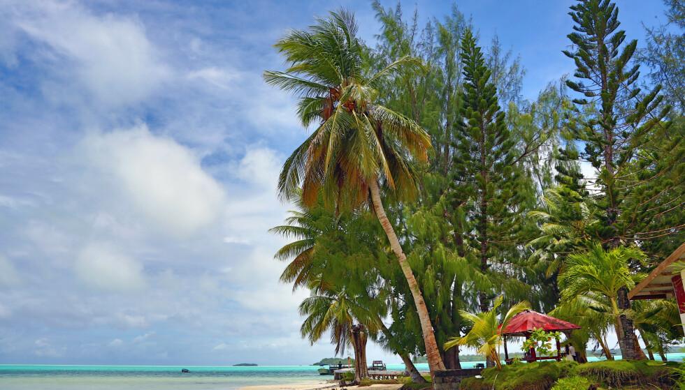 FORBUD FRA 2020: Øysamfunnet Palau i Stillehavet innfører sitt forbud i 2020. Foto: NTB Scanpix