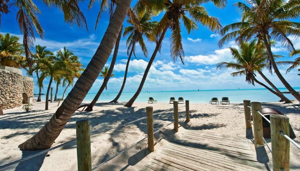 Key West, Florida. Foto: NTB Scanpix