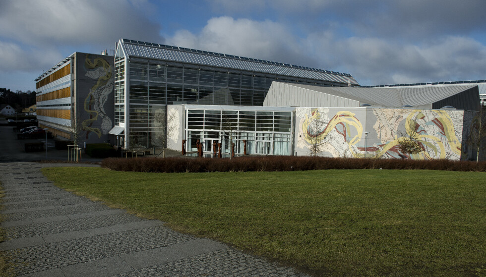 LEDIGE PLASSER: Samordna opptak opplyser at det er over 300 ledige studieplasser landet rundt. Bildet er fra universitetet i Stavanger. Foto: Carina Johansen