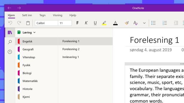 Et eksempel på hvordan du kan organisere notatene dine i forbindelse med studier.